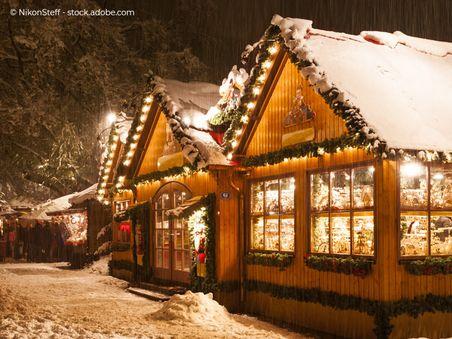 Mecklenburger Adventsmarkt / Weihnachtsmarkt